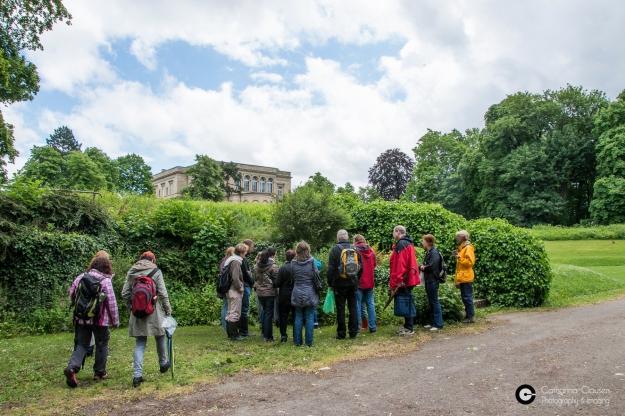 Kräuterwanderung Villa Berg 24. Mai 14 CClausen-24